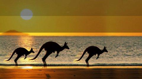 Viaggiare all'insegna dell'ecostenibilità in Australia