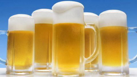 Birra biologica italiana, un'eccellenza tutta da gustare