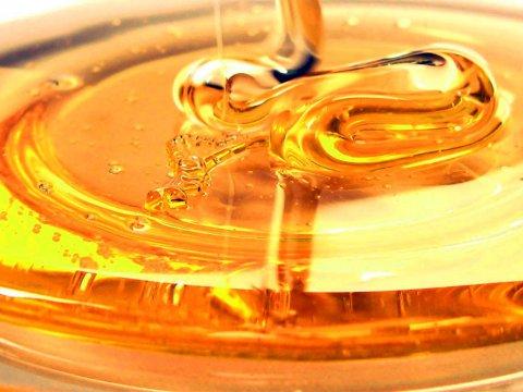 Miele biologico, un alimento sano e buonissimo