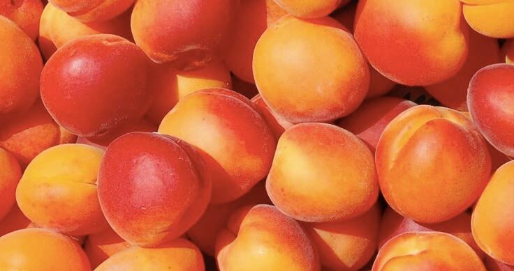 cromoterapia-a-tavola-frutta-arancione
