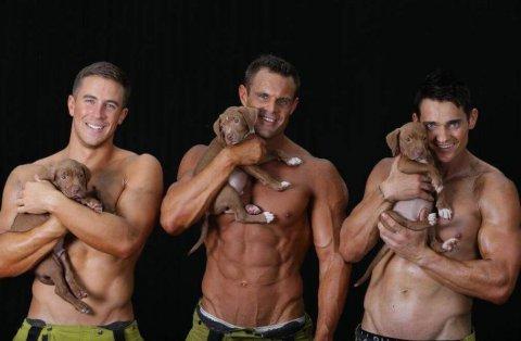 Pompieri sexy, calendario in aiuto dei cuccioli abbandonati
