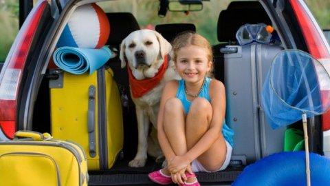 Animali in vacanza, consigli per il viaggio