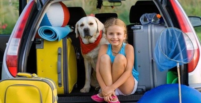 Animali in vacanza, consigli di viaggio