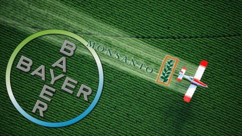 Bayer e Monsanto, quale futuro vogliamo scegliere per il pianeta?