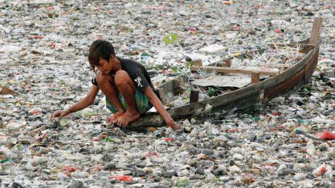 Petizione, stoviglie di plastica solo BIODEGRADABILI per legge