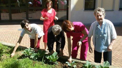 Ortoterapia, prendersi cura dell'orto fa bene a chi soffre di Alzheimer