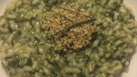 Risotto alla potulaca e semi di canapa