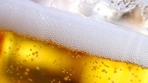 Birra biologica: fresca, sana e buona!