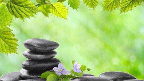 L'attualità della medicina naturale