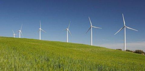 Eolico: crolla il costo dell'energia dal vento in Italia