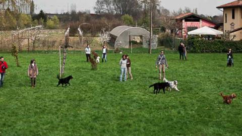 Cani, bambini e famiglie: tutti in festa per il decennale di Cani per Caso