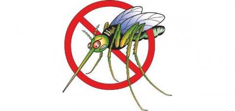Spray antizanzare naturale, un aiuto efficace