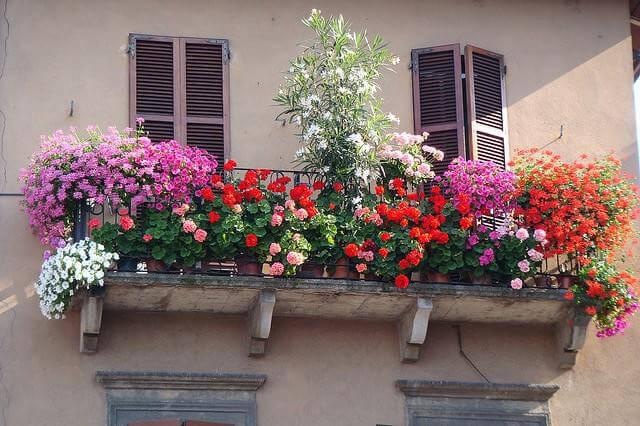 balconefiorito1.jpg