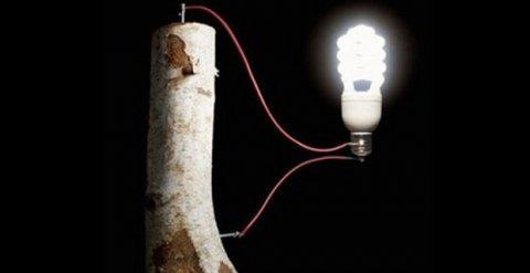 La batteria ecologica