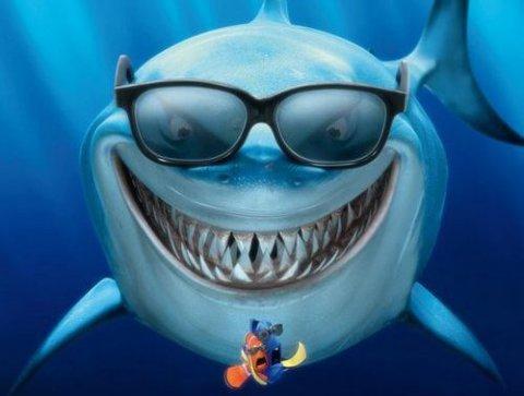 Lo squalo vegetariano
