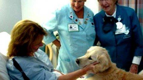 A Prato una camera allestita per gli incontri tra pazienti e animali