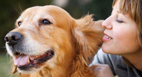 I cani e i loro padroni