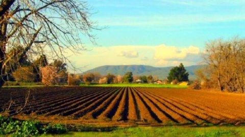 L'eccellenza dell'agricoltura biologica in Italia