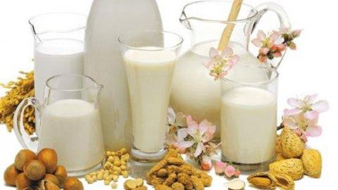 Tutte le proprietà del latte vegetale